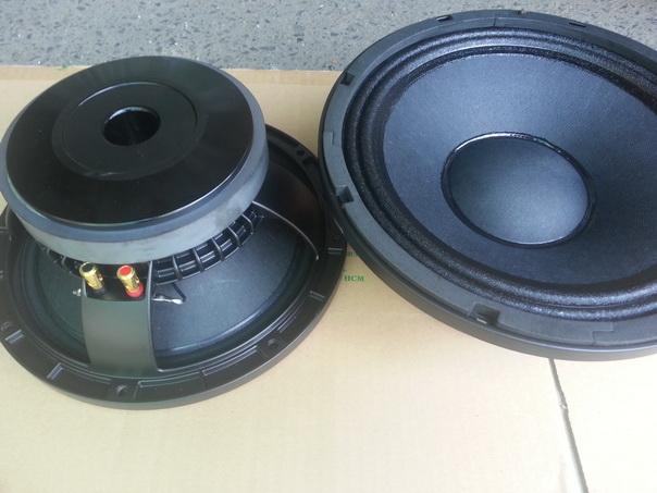 Loa Bass 25cm RCF